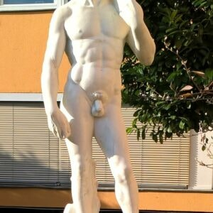 Statue David von Michelangelo