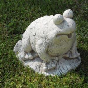 Frosch Art.656