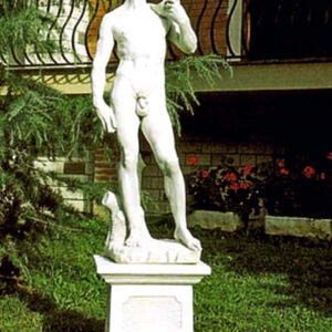 Statue David di Michelangelo mittel Art.442