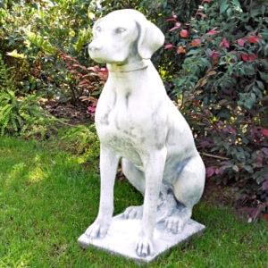 Tier Hund Bracco Art.648