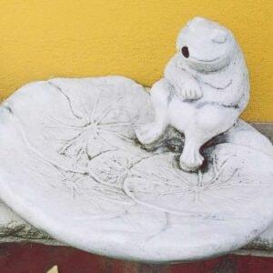 Frosch Rana Su Conchiglia Art. 642